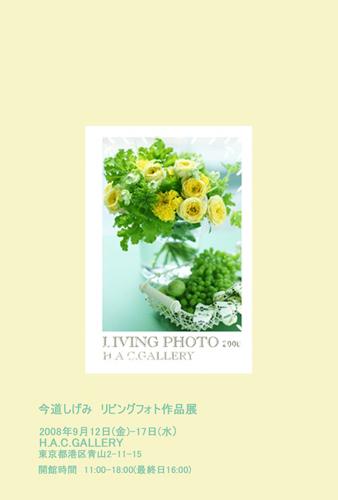 Livingphoto2